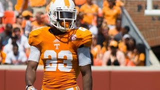 "Ultimate Cameron Sutton Highlights HD ""Playmaker Cam"""