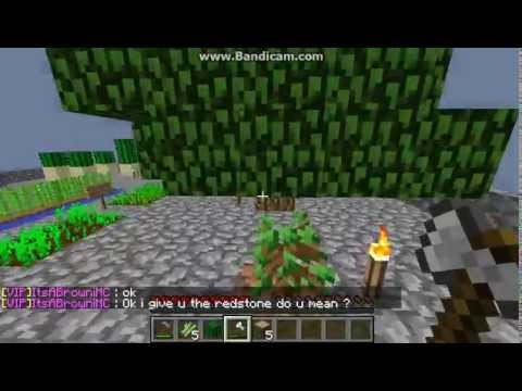 Minecraft 1.7.2 Cracked Skyblock Server.