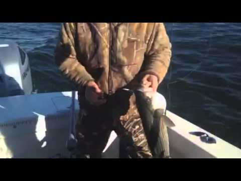 Commercial Fishing with Tim Sughrue