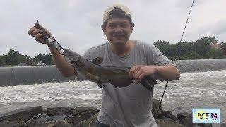 câu cá ở Mỹ băt được cá to