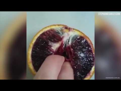 Fingering Fruit. thumbnail