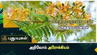 மூட்டுவலி குணமாக வாதநாராயணன் இலை   அறிவோம் அரோக்கியம்   Puthuyugam TV