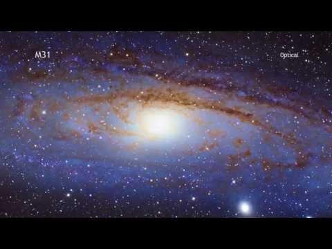 Nearby Andromeda Galaxy is Full of Black Holes | NASA Chandra Space Science HD