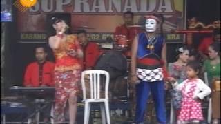 download lagu Kimcil Kepolen - Campursari Supra Nada Live In Gesing, gratis
