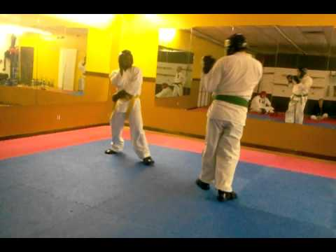 Ky Isshin-ryu Technique sparring Image 1