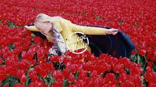 Download Lagu Kalaido - In the Roses Gratis Mp3 Pedia