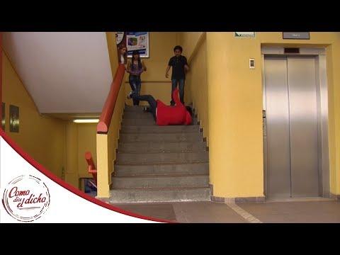 Aura tiene envidia de Paco y lo avienta en las escaleras | El que es... | Como dice el dicho