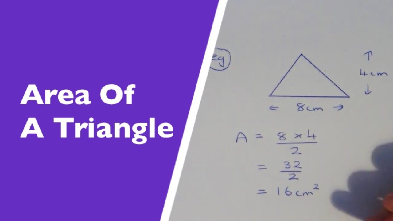 How To Work Out The Area Of A Triangle Youtube