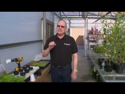 Did You Know - Hydroponic Gardening