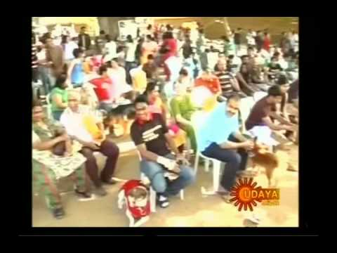 Udaya News - The Great Indian Dog Show