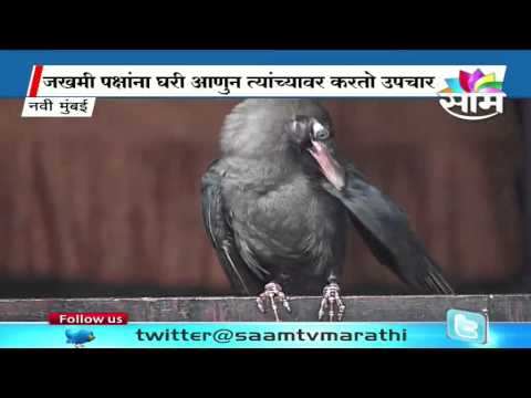 Dilip Mhatre's unique penchant for crows