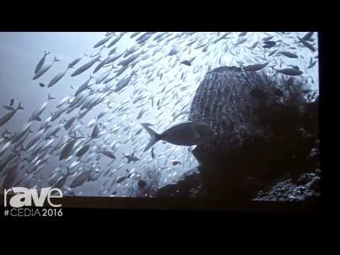 CEDIA 2016: Stewart Filmscreen Demos New Phantom HALR Light Rejection Projection Screen Material