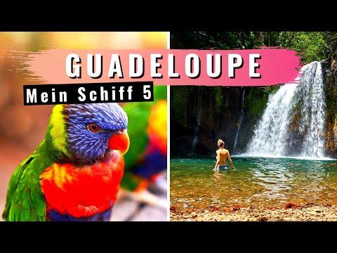 GUADELOUPE Urwald Wanderung und Botanischer Garten - MEIN SCHIFF [2019]