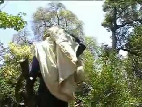 Traditional Amharic Music By Tadesse Alemu - Goje Melegnaw video
