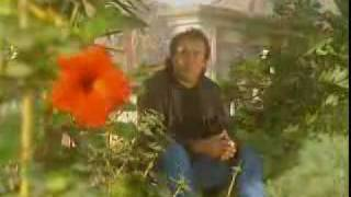 Romina Power - E' Come Musica