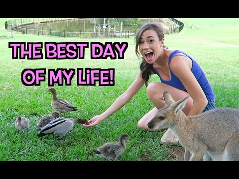 The Best Day Of My Life! video