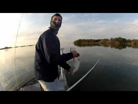 cocoa beach fishing montage