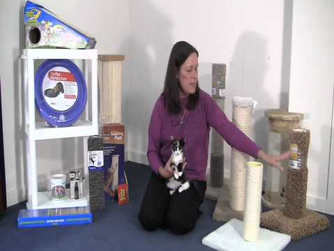 Selecting a Scratching Post for Your Cat