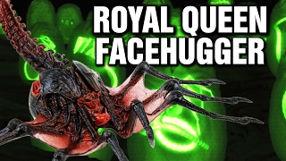 Super Royal Queen Facehugger Explained - Xenomorph Parasite