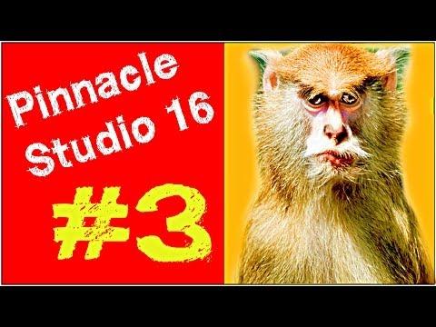 Pinnacle Studio 16 ,17 Эффект картинка в картинке Урок 3 Мысля от Эдгара
