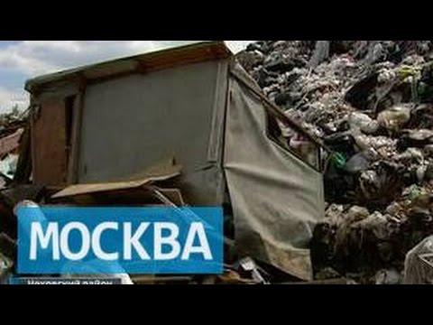 Бомжей под Чеховом лишили Рублевки
