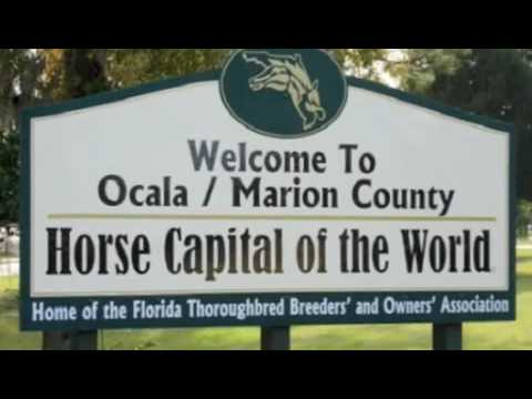 The History of Ocala