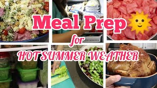 LARGE FAMILY MEAL PREP for the week/month..HOT weather FOOD IDEAS
