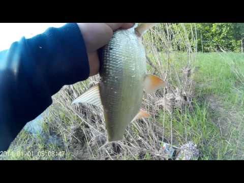 рыбалка на реке урал 2016