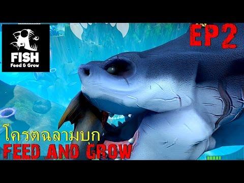 BGZ - Feed And Grow EP#2 โครตฉลามบุก