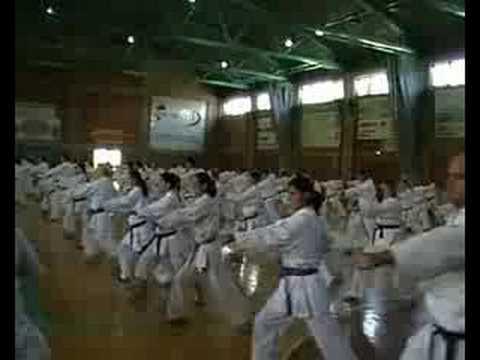 Wado karate russia