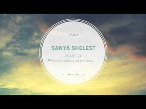 Sanya Shelest  - Peace Data (Original mix)