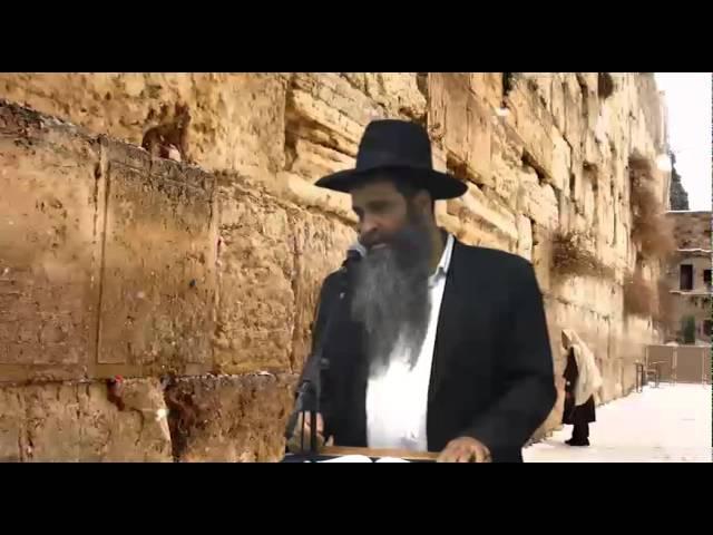 הרב רפאל זר - karvenu.co.il - תמרור לפניך