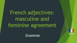 Feminine and Masculine French adjectives