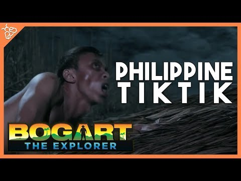 Bogart the Explorer: Aswang Hunter - Chapter 1: The Philippine Tiktik
