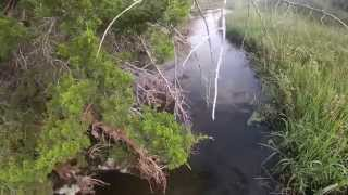 Bowfishing the North Canadian River in Northwest Oklahoma