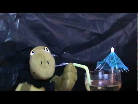 Прикольная черепаха читает стих о 8 марта. Смешно