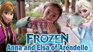FROZEN Anna and Elsa of Arendelle Doll Set