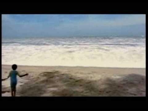 Thailand's Tsunami, 2004