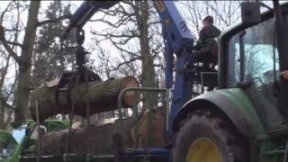 OneOak timber extraction