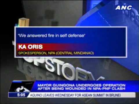 NPA rebels blame police in Guingona ambush