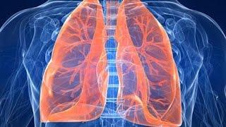Video clip Top 9 phát hiện thú vị về cơ thể con người