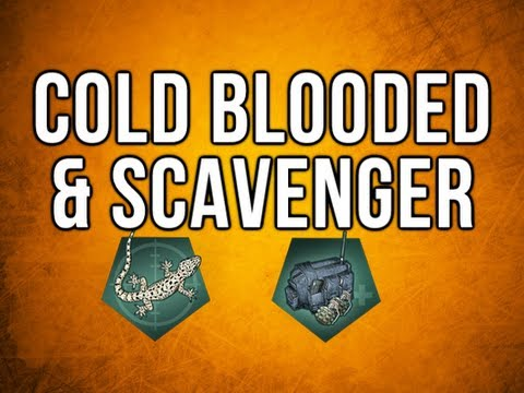 Black Ops 2 In Depth - Cold Blooded & Scavenger Perks