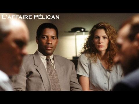 L'affaire Pélican 1993 (The Pelican Brief) - Film Réalisé Par Alan J. Pakula