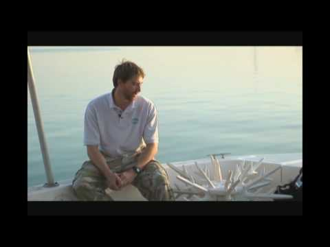 Dolphin Energy Limited Artificial Reefs in Qatar by CSA International Inc. Part 2