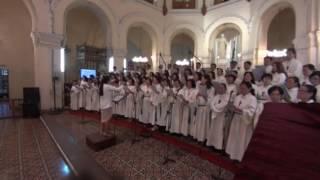 Mừng Hai Thánh Tông Đồ | Mai Thiện | Ca đoàn Vô Nhiễm VCTD Sài Gòn