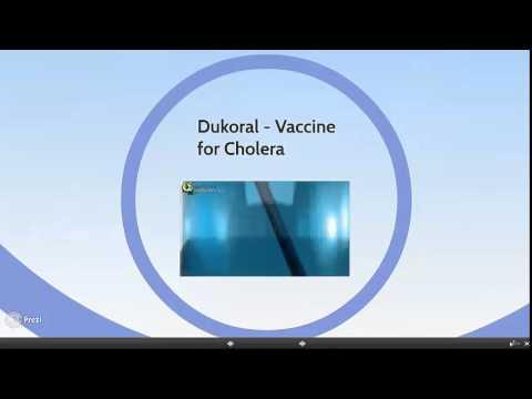 Embracing Oral Cholera Vaccine  The Shifting Response to Cholera