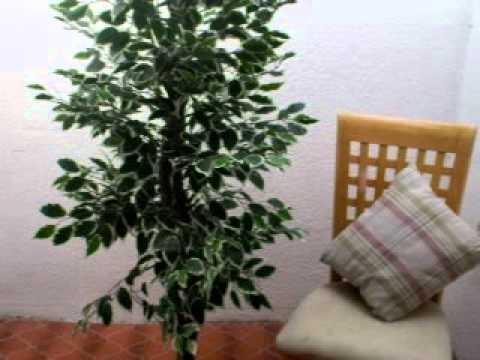 Vegataci n verde plantas artificiales flores y jard n for Jardines con plantas artificiales