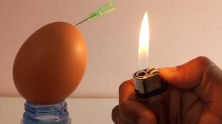 6 Amazing Life Hacks With Eggs - Egg Life Hacks - Awesome Eggs Tricks