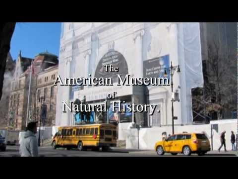 NEW YORK. The American Museum of Natural History, 22,2,2011.