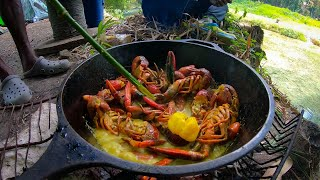 Spanish Bridge | Crayfish Catch Clean N' Cook